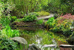 image of finnerty gardens one of the free things to see and do in Victoria, BC