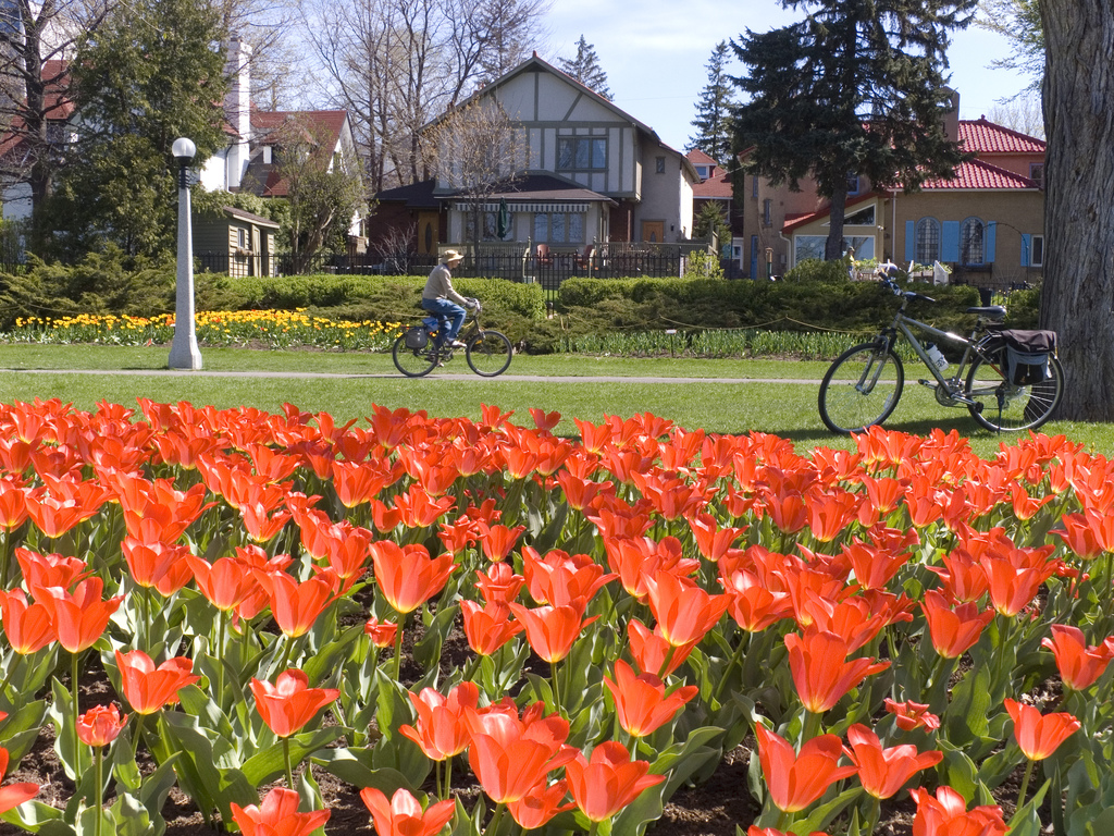 image of biking one of the cheap, fun things to see and do in Ottawa