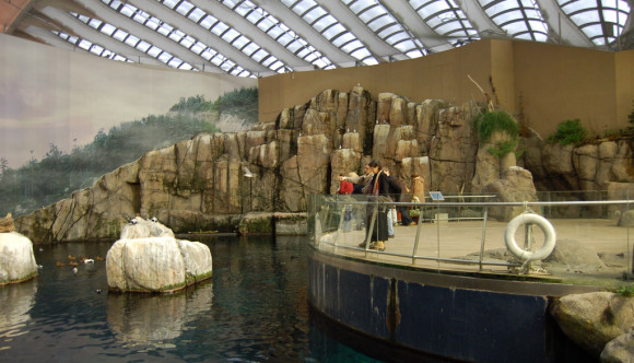 image of Biodome Montreal one of the Best Cheap Things to See, Do and Visit in Montreal