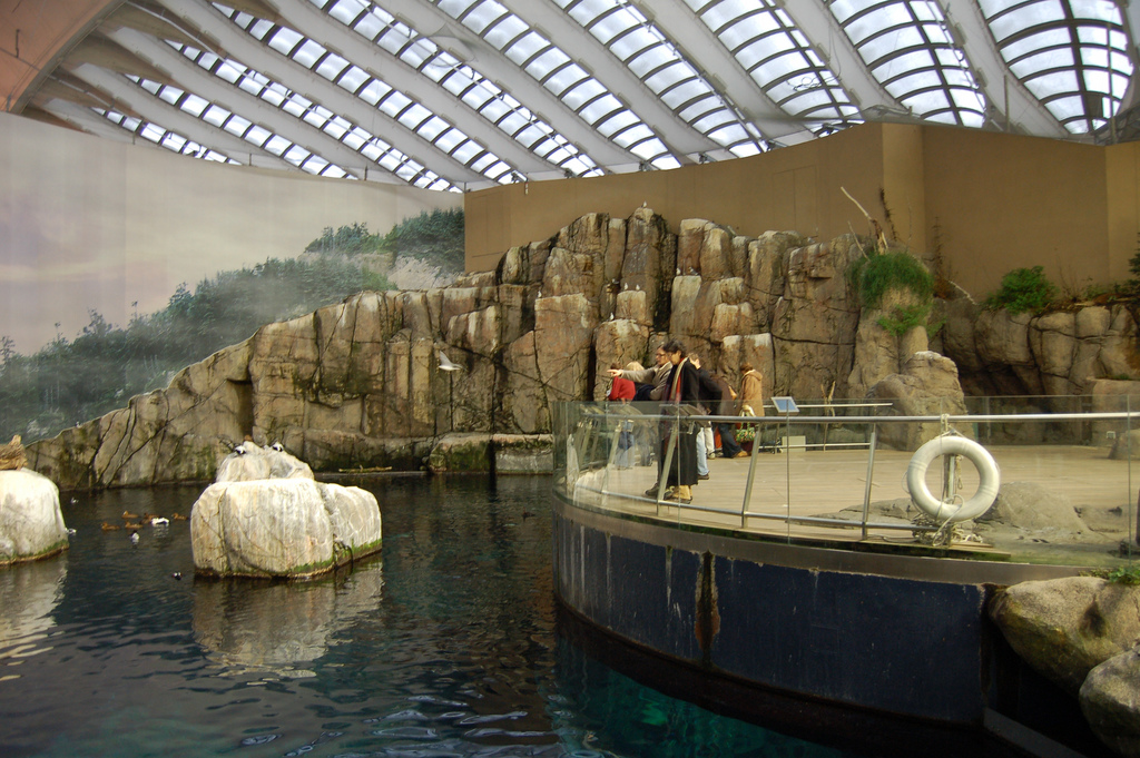 Coupons for montreal attractions
