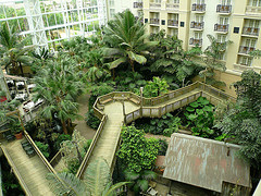 image of the Gaylord Palms Hotel Gardens one of the Free Things and Stuff to Do in Orlando