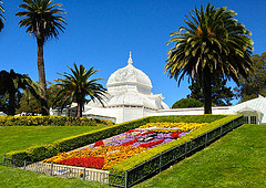 image of the golden gate park one of the Free Things and Stuff to Do in San Francisco