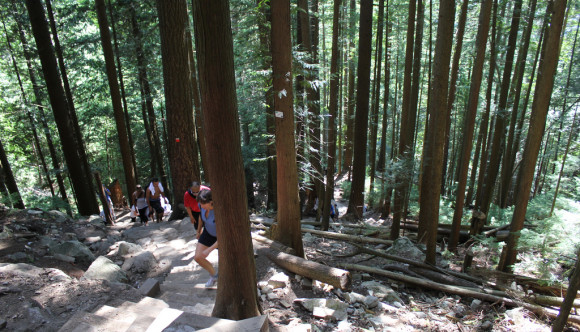 image of the grouse mountain grind one of the Best Cheap Things to Do and Fun Stuff to See in Vancouver
