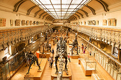 image of the Musee de Histoire de Paris one of the Free Things and Stuff to Do in Paris