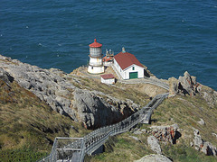 image of Point Reyes National Park one of the Free Things and Stuff to Do in San Francisco