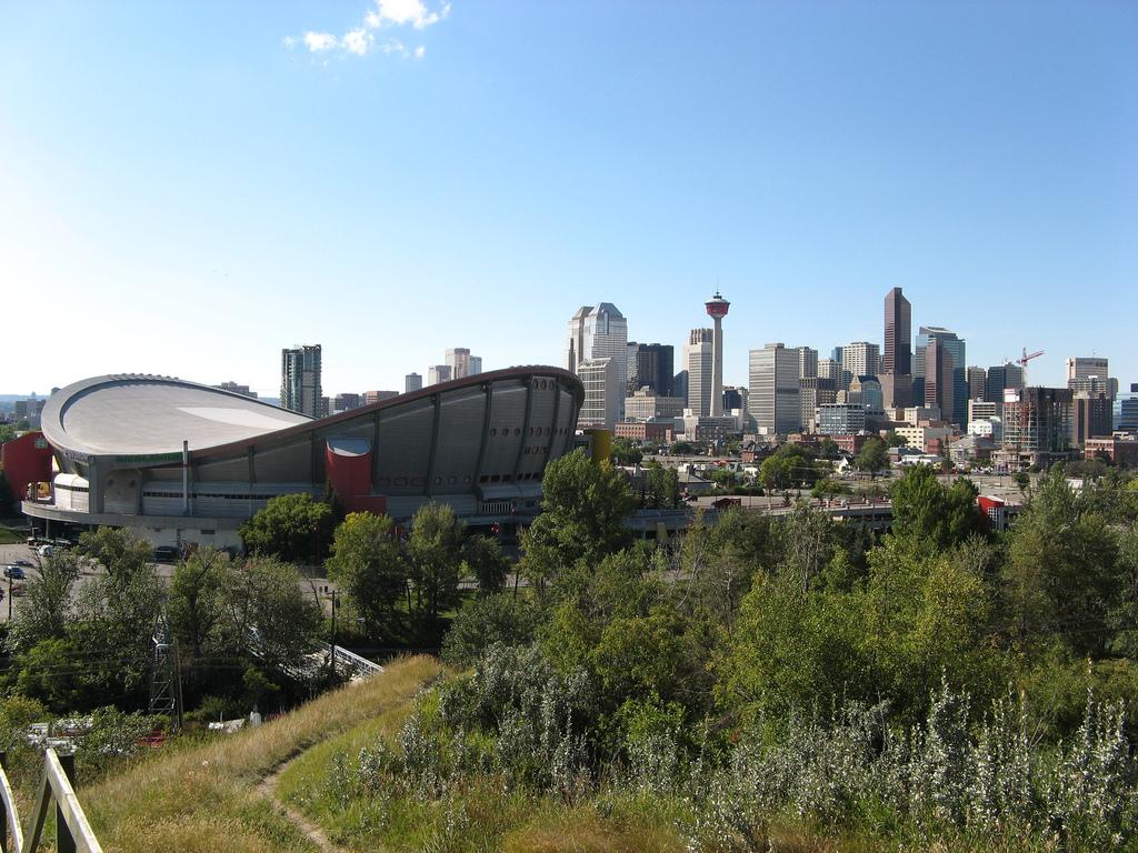 image of the Calgary Saddledome