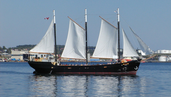 image of the Tall ship silva one of the Best Cheap Things and Stuff to Do in Halifax