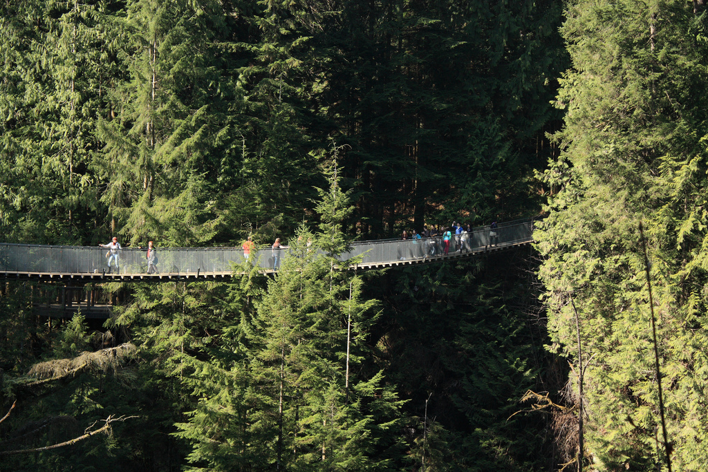 image of the capilano suspension bridge one of the vancouver attractions that offers discount admission coupons