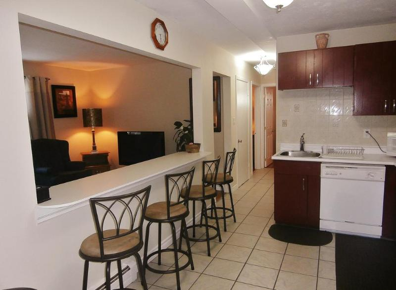 image of the Executive Suite one of the cheap vacation rentals available in Niagrara Falls, Ontario, Canada