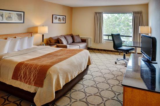 image of the comfort inn ottawa west kanata one of the cheapest hotels located near the Canadian tire centre