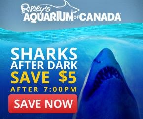 image of Ripley's Aquarium of Canada in Toronto, one of the popular Toronto attractions that you can get discounted tickets to