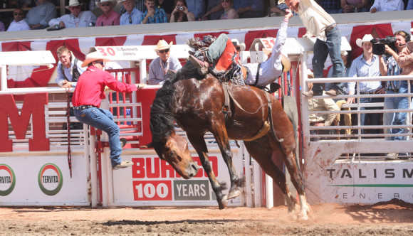 image of the Calgary Stampede one of the events listed in the Calgary Events Calendar