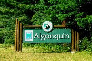 image of a sign for Algonquin Provincial Park