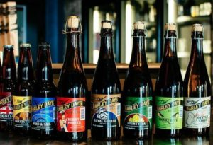 image of some of the beers to taste at Barley Days Brewery one of the free, cheap, fun things to do in Prince Edward County, Ontario