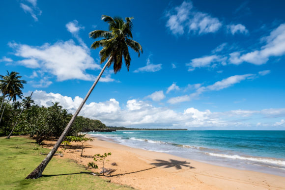 a cheap winter getaway--a secluded beach in the Domincan Republic